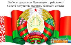 Указ № 410 от 14 ноября 2017 г.