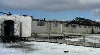 Пажар на ферме ў Багданаўцы: эвакуіравана сто цялят