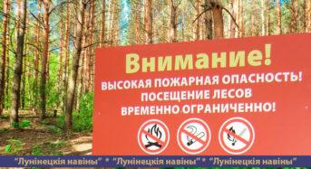 Запрет на посещение лесов введен на Лунинетчине из-за высокого класса пожарной опасности