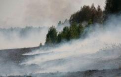 На Лунинетчине ситуация с пожарами контролируемая