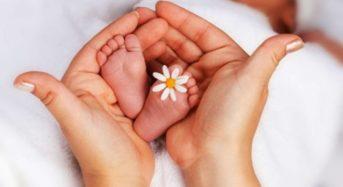 На 100 малышей увеличилось в этом году население в Микашевичах