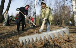Месячнік па добраўпарадкаванню працягнецца на Лунінеччыне на 26 красавіка