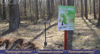 «Неделя леса» продолжается на Лунинетчине