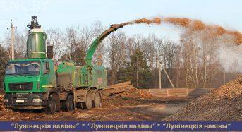 Экспортные дрова и не только…