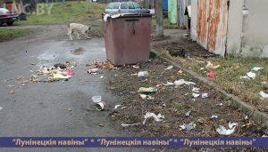 Дилемма: убрать мусор или контейнер?