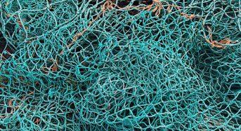 Добровольно сдавших сети рыбаков освободят от ответственности